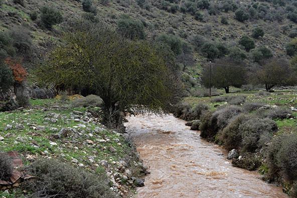 נחל דישון. גם לטופוגרפיה יש השפעה יש השפעה על הספיקות בנחל | צילום: רתם אלינסון