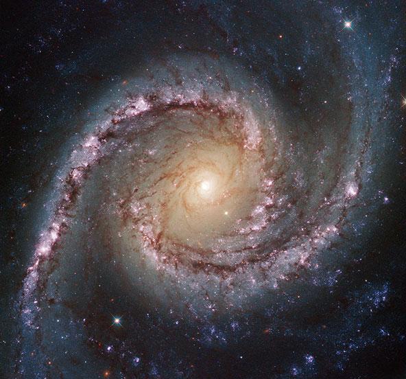 צילום מטלסקופ האבל המראה את NGC 1566, גלקסיה יפהפייה שנמצאת במרחק של כ-40 מיליון שנות אור | צילום ESA/Hubble & NASA