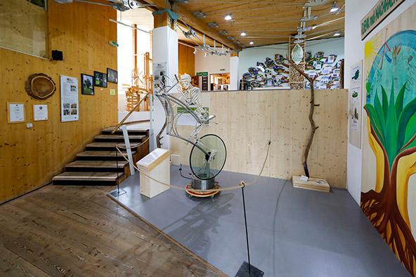 NaturLese הוא מוזיאון טבע חדשני ומרתק