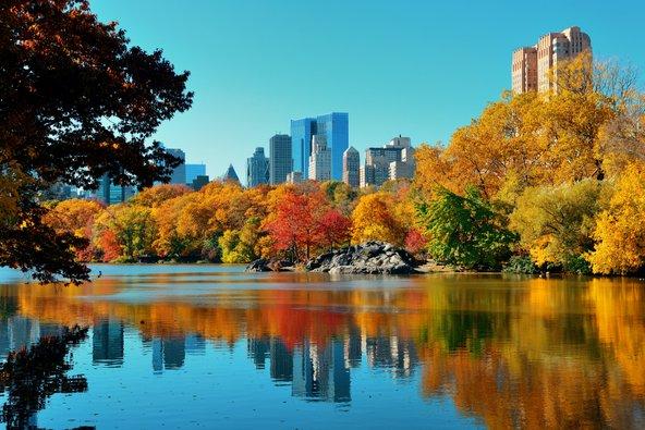האגם בלב הסנטרל פארק, הריאה הירוקה של ניו יורק