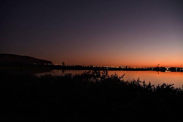 הצפות של שדות באזור חוף הכרמל חידשו את ימיהן של ביצות כבארה המיתולוגיות | צילום: רתם אלינסון