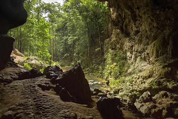 מאונטיין פייו רידג', אחת משמורות הטבע היפות ביותר בבליז