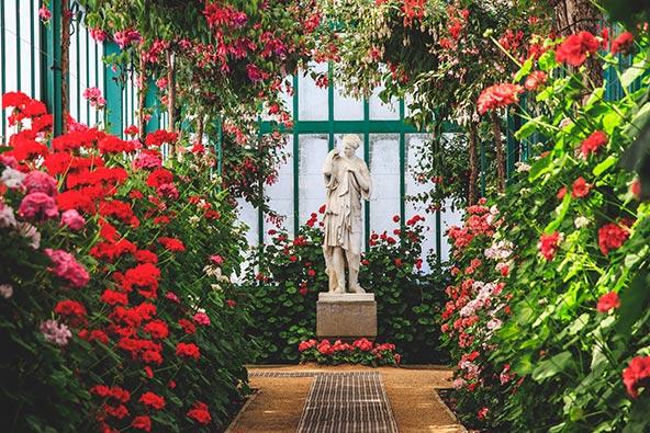 חממה בגנים של ארמון המלך בצפון בריסל. הגנים נפתחים לציבור פעם בשנה, באביב, למשך שבועיים וחצי