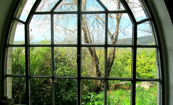 הנוף מהחלון בסלון של אחוזת השחר