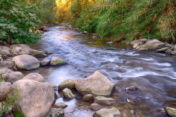 """נחל שניר. הנחלים הרבים הזורמים באזור מצדיקים את הכינוי """"ארץ פלגי מים"""""""
