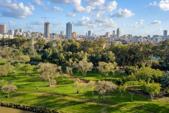 תל אביב אמנם פקוקה וצפופה אבל בכל הנוגע לשטחים ירוקים היא מובילה