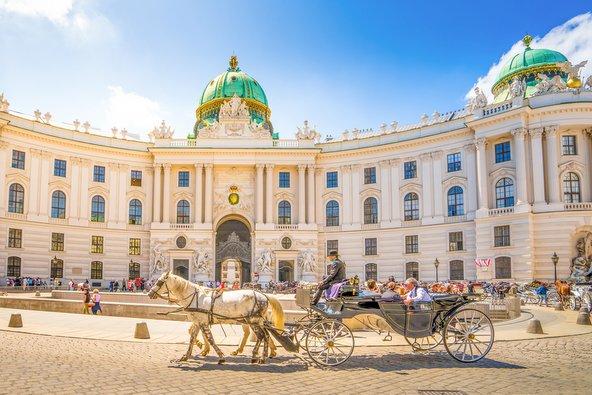 טיפים לווינה: ההמלצות הכי שוות