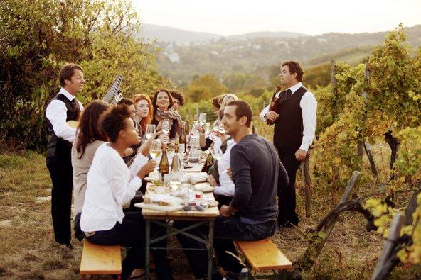 בגבעות מכוסות הכרמים שסביב וינה פועלות טברנות יין מסורתיות | צילום: © WienTourismus/Peter Rigaud