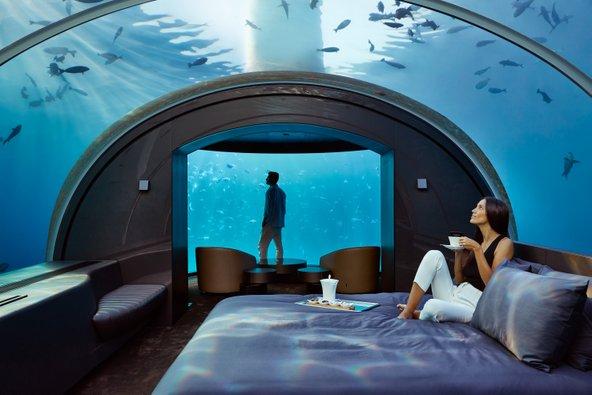 מתחת למים: המפלס התחתון בסוויטת מורקה. סרט טבע בשידור חי מתרחש מול העיניים