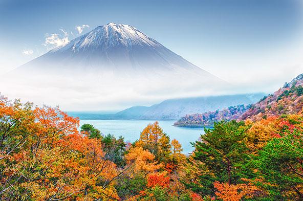 הר פוג'י יפה כל השנה, ובמיוחד בעת פריחת הדובדבן ובשלכת