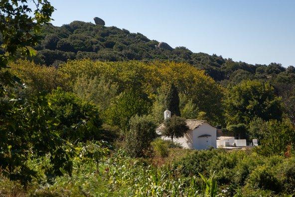 באיקריה גדלים צמחי בר רבים ורבים מהתושבים מטפחים גינת ירק בחצר הבית