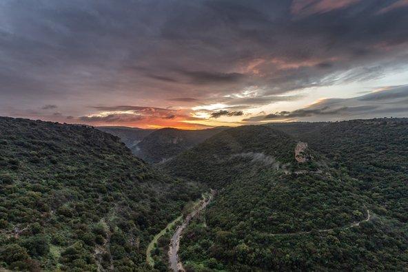 היופי וערכי הטבע של השמורה נמצאים בסכנה