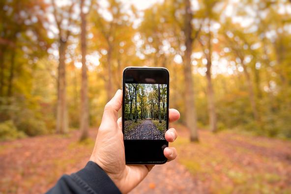 סדנת צילום בסמארטפון – צילומים נבחרים