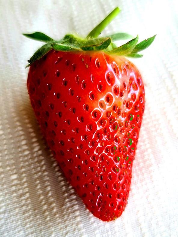 """ד""""ר קובי איבגי, תות אדום. שימוש יפה בתאורת חלון ומיקוד על אובייקט בצבע בולט, והתוצאה יפהפייה: חדות מקסימה של תות מעורר תיאבון"""