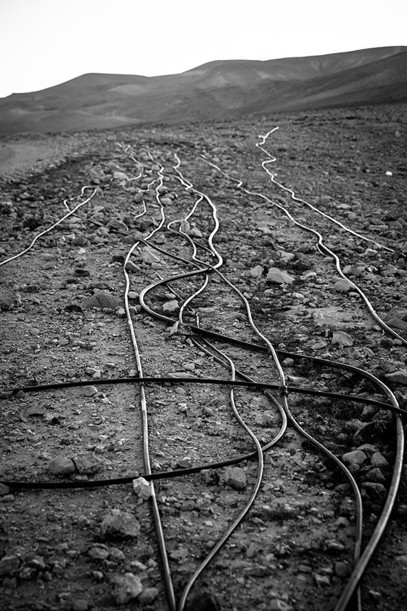 רשת של צינורות השקיה שחורים מובילים מים מהצינור הראשי למגורי הבדואים | צילום: דן פרברוף