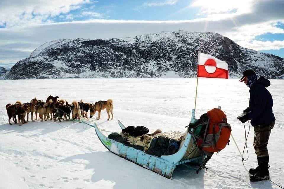 מסע מזחלות כלבים בגרינלנד