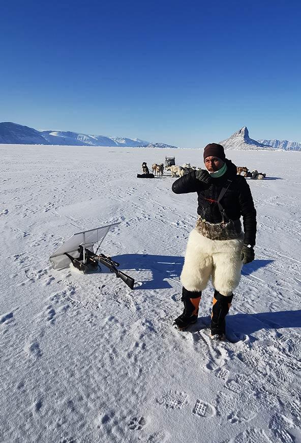 ציד כלבי ים עדיין נפוץ בצפון גרינלנד. כלב הים הוא מקור חשוב לבשר, שומן ופרווה