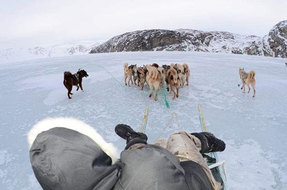מסע במזחלות כלבים בבחורף הגרינלנדי מצריך הכנות מדוקדקות וחלוקה שווה של הציוד בין המזחלות