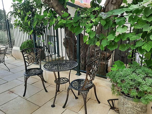 גפנים ועץ תות עתיק מצלים על מרפסת הפטיו הנעימה של המלון