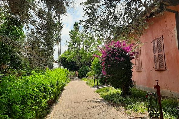 בית אהרונסון בזכרון יעקב