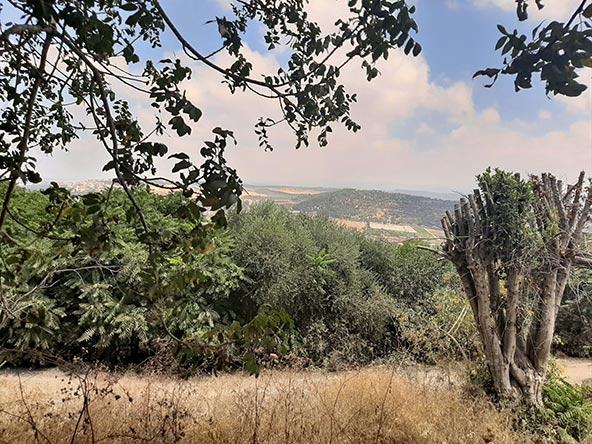 הנוף בדרך לגבעת זמארין. ביום בהיר אפשר לראות את הים