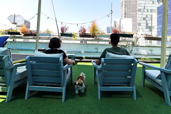 על גגות תל אביב: עם הכלבלב על הגג באברהם תל אביב | באדיבות אברהם הוסטלס