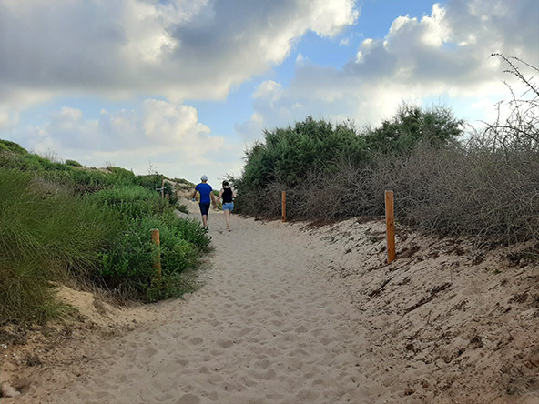 הפארק האקולוגי באשדוד