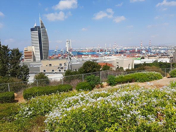 גן הזיכרון ברחוב חסן שוקרי משקיף אל הנמל על מנופיו ומכולותיו