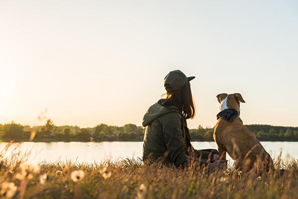 כמה נחמד לחלוק רגעים ונופים כאלה עם הכלב האהוב