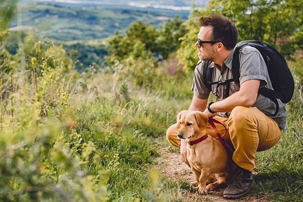 לא בכל שמורות הטבע המוכרזות מותר לטייל עם כלבים
