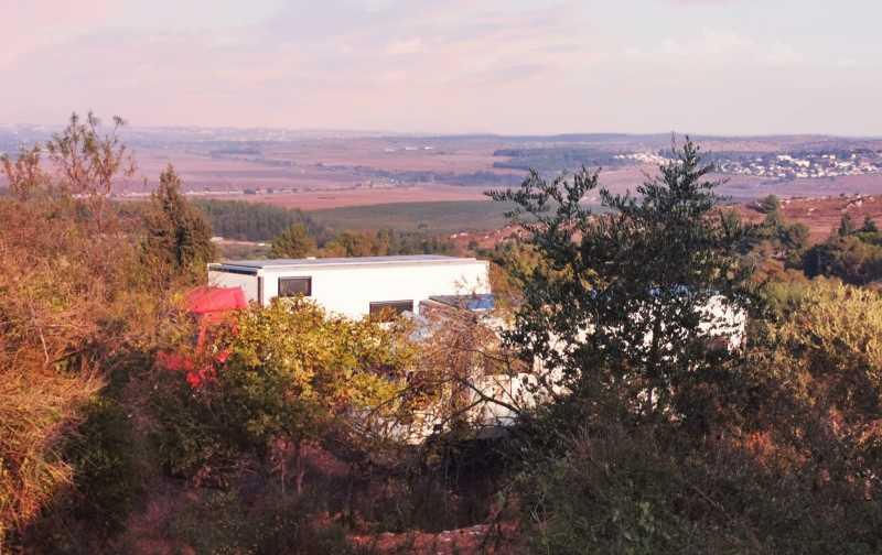 מעל העצים נשקף הנוף הכפרי של עמק איילון. צילום: רונן רז