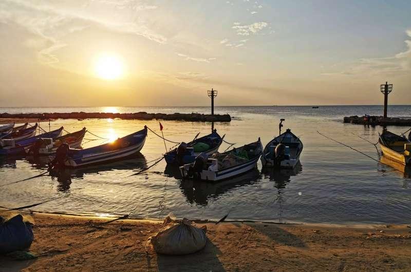 הדייגים אומרים שהסתיו היא העונה הטובה ביותר לצאת לדוג בים