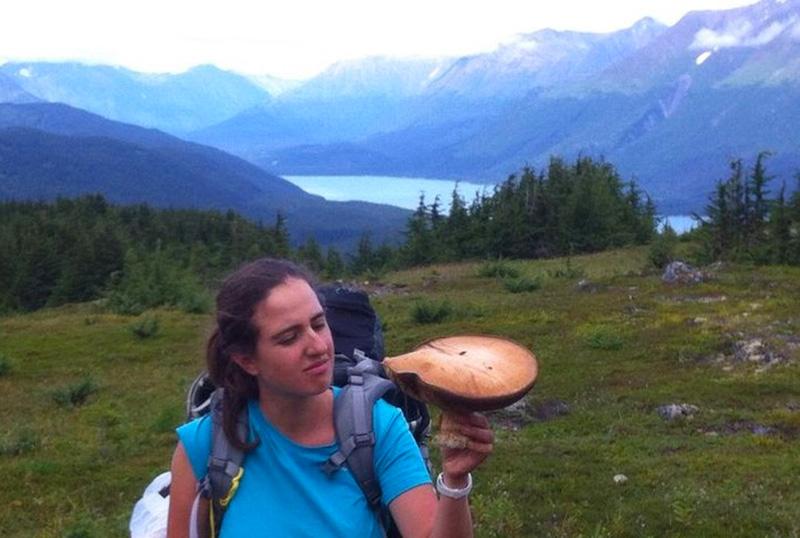 גושית נאכלת (פורצ'יני) באלסקה