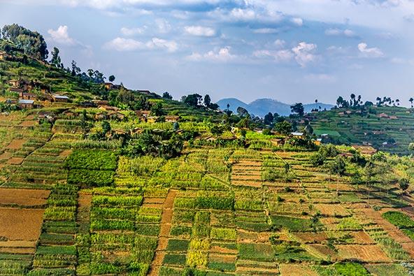 ישראייר תפעיל טיסות ישירות לרואנדה