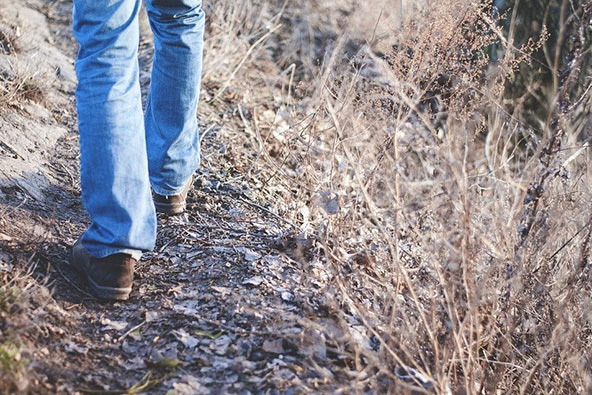 לטייל עד שהכאב יעבור