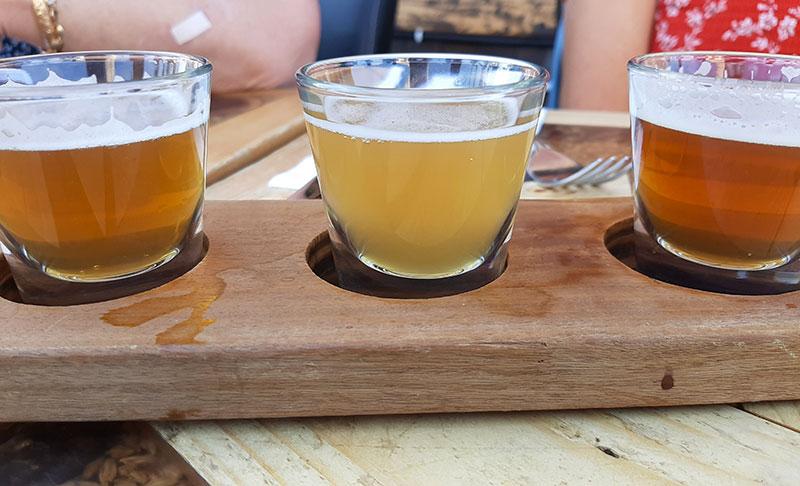 טעימות בירה במבשלה