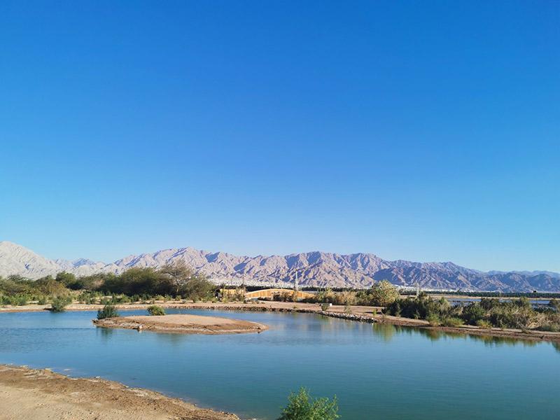 האגם בפארק הצפרות | צילום: עדי גור אריה