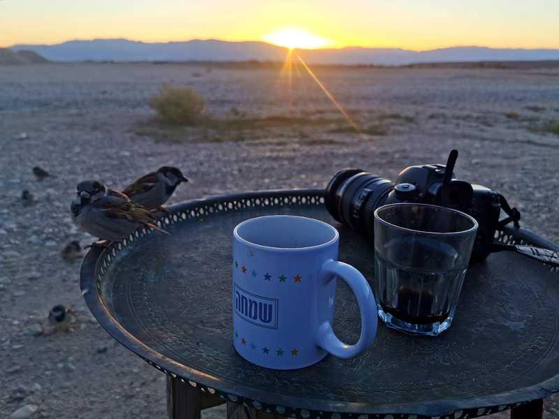 """בבוקר ישבנו ביחד על כוס קפה. שמש חורפית של מדבר ורוחות ואבק אפפו אותנו. גרוטאת מתכת חרקה ברקע מפני הרוח הנושבת. """"אנחנו חיים בקפה בגדד"""""""