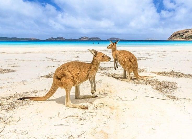 No Worries Tours – המומחים לאוסטרליה וניו זילנד בישראל