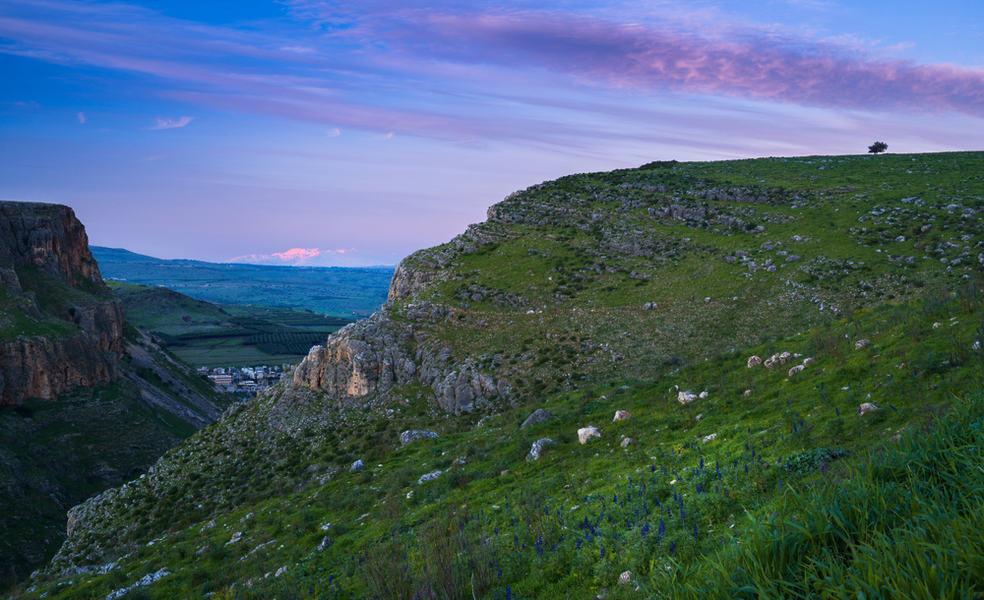 מצוק הארבל באביב | צילום: שאטרסטוק