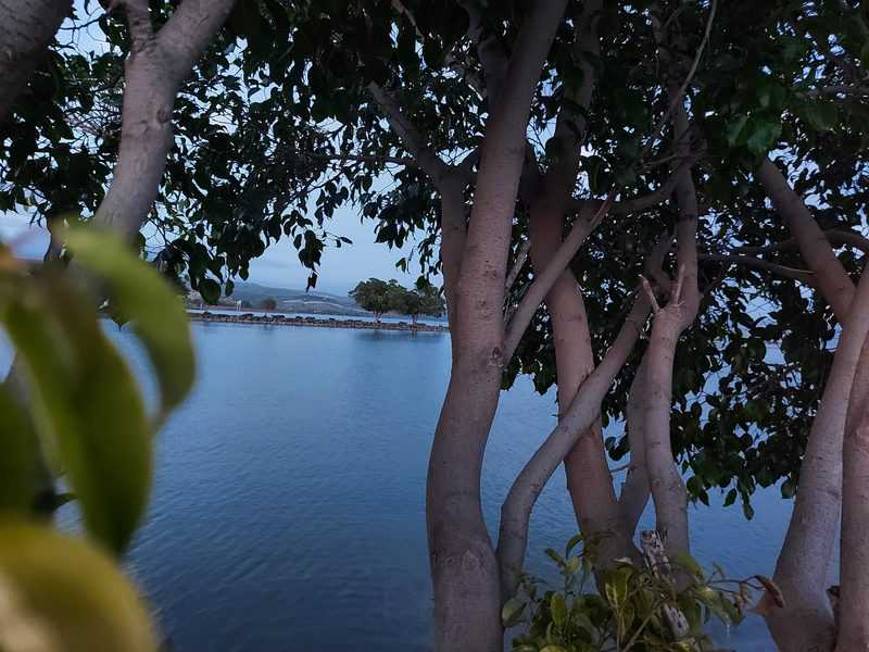 קסם על ים כנרת. שעת בין ערביים בגינוסר | צילום: רותם בר כהן