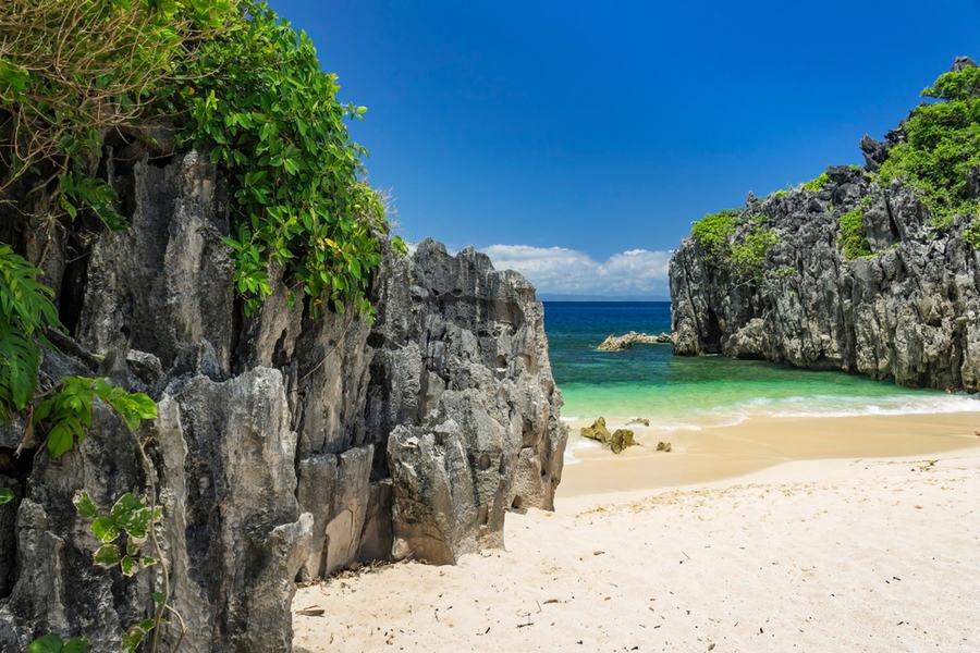 העונה החדשה של הישרדות – בפיליפינים