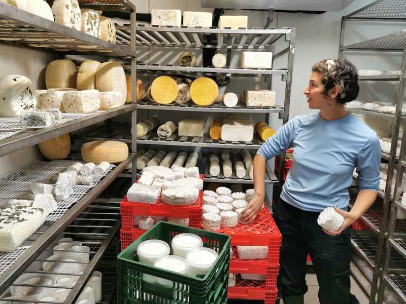 עוברי אורח שמגיעים אל חנות הגבינות של החווה לא פוגשים אנשים, אלא מקרר עם צנצנות גדולות של יוגורט ושפע של גבינות קממבר, ברי, בולגרית ואחרות, שלט עם מחירי הגבינות לפי משקל, וקופה פתוחה