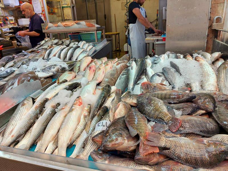 דוכן דגים בשוק