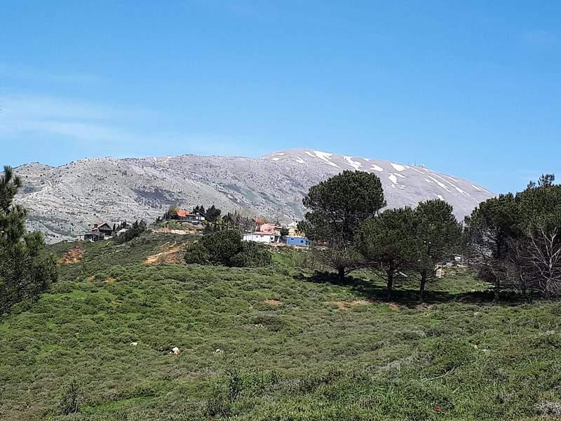 נופי צפון הגולן. צילומים: יואב יעקובי