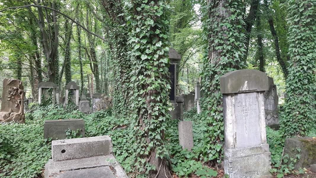 בית הקברות היהודי