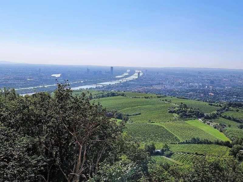 Una vista de Viena desde Koventzel.  Vale la pena el viaje