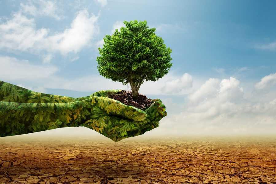 ההתחממות הגלובלית: זה בידיים שלנו