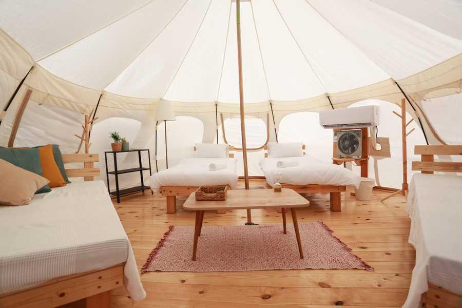 חוות האלפקות. אוהלים מעוצבים עם ריצוף עץ ומיטות במרחק יריקה מהאלפקות   צילום: תאיר מלכה